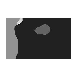 Consejo Español de Resucitación Cardiopulmonar